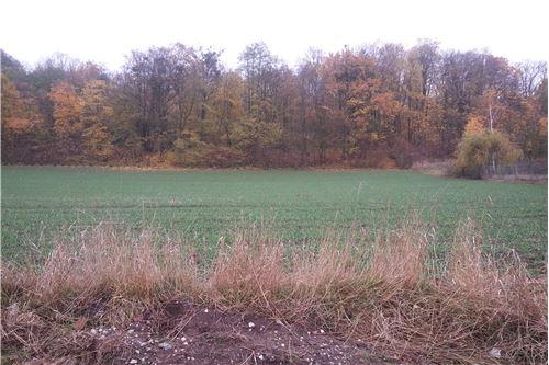 Land - For Sale - Wielkie Łunawy, Poland - 13 - 800061076-111