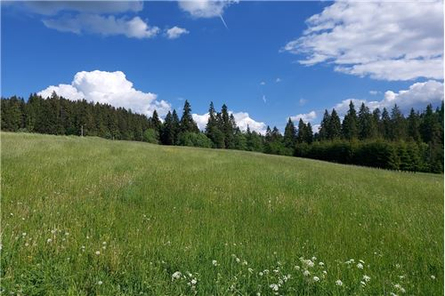 Land - For Sale - Bialy Dunajec, Poland - 3 - 470151035-23