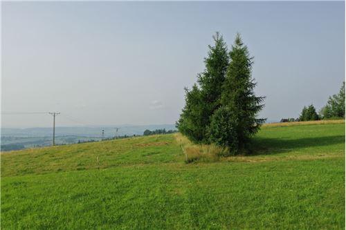 Plot of Land for Hospitality Development - For Sale - Sierockie, Poland - 28 - 470151035-24