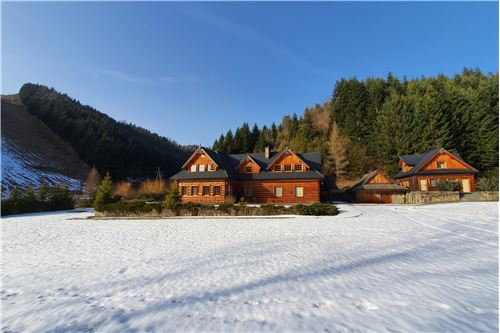 Investment - For Sale - Szczawnica, Poland - 2 - 800091028-24