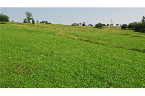 Plot of Land for Hospitality Development - For Sale - Zab, Poland - 18 - 470151035-8