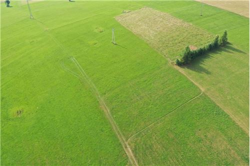 Plot of Land for Hospitality Development - For Sale - Sierockie, Poland - 12 - 470151035-24