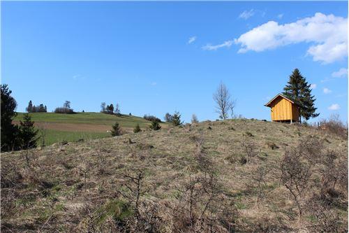 Land - For Sale - Falsztyn, Poland - 24 - 800091015-38