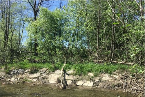 Land - For Sale - Lodygowice, Poland - 3 - 800061090-1