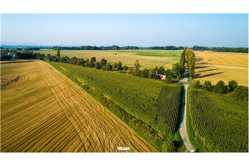 Investment - For Sale - Rudnik, Poland - 2 - 800061057-24