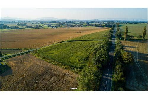 Investment - For Sale - Rudnik, Poland - 15 - 800061057-23