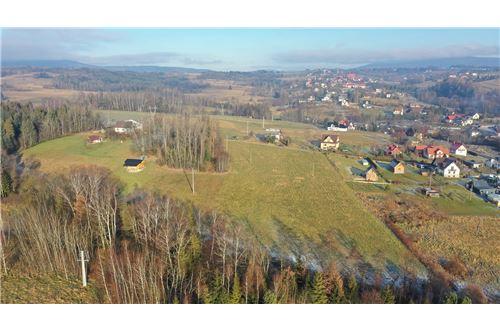 Plot of Land for Hospitality Development - For Sale - Naprawa, Poland - 19 - 470151035-6