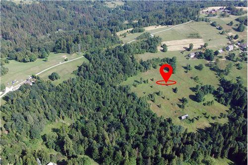 Plot of Land for Hospitality Development - For Sale - Sól-Kiczora, Poland - 11 - 800061076-120