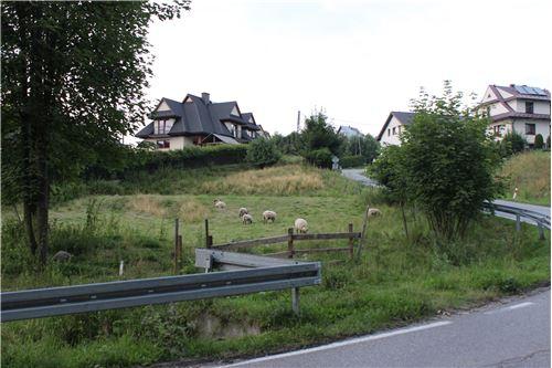 Plot of Land for Hospitality Development - For Sale - Szaflary, Poland - 13 - 800091015-40
