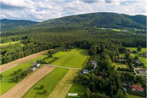 Land - For Sale - Czaniec, Poland - 11 - 800061057-48
