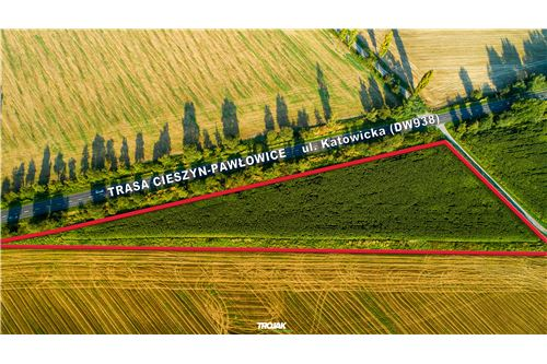 Investment - For Sale - Rudnik, Poland - 1 - 800061057-24