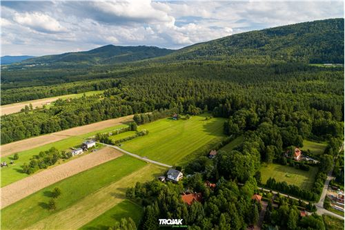 Land - For Sale - Czaniec, Poland - 10 - 800061057-48