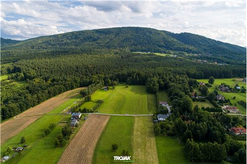 Land - For Sale - Czaniec, Poland - 12 - 800061057-48