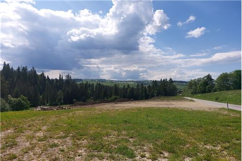 Land - For Sale - Bialy Dunajec, Poland - 6 - 470151035-23