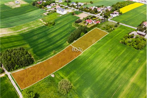 भूमि - बिक्री के लिए - Nowa Wieś, Polska - 24 - 800241006-9