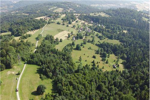Plot of Land for Hospitality Development - For Sale - Sól-Kiczora, Poland - 5 - 800061076-120