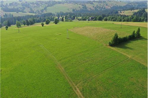 Plot of Land for Hospitality Development - For Sale - Sierockie, Poland - 13 - 470151035-24