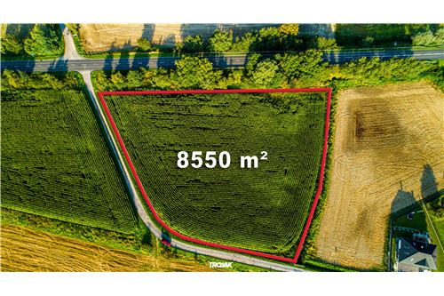 Investment - For Sale - Rudnik, Poland - 11 - 800061057-23
