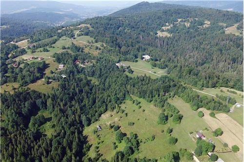 Plot of Land for Hospitality Development - For Sale - Sól-Kiczora, Poland - 14 - 800061076-120