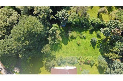 Land - For Sale - Bielsko-Biala, Poland - 60 - 800061039-131