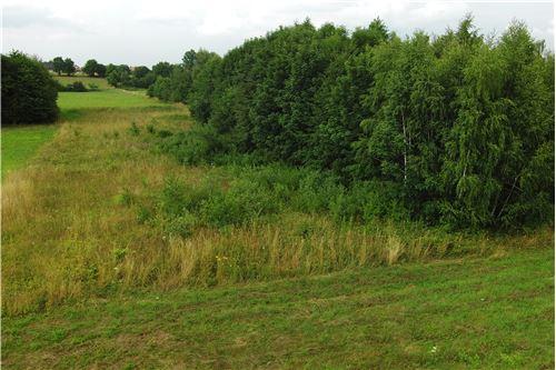 Plot of Land for Hospitality Development - For Sale - Lipowa, Poland - 7 - 800061087-4