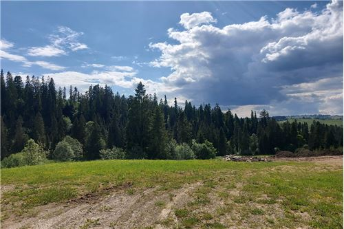 Land - For Sale - Bialy Dunajec, Poland - 5 - 470151035-23