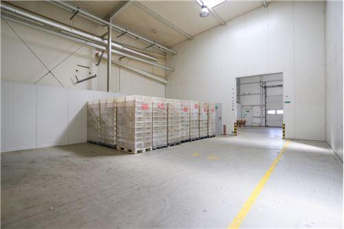 Nieruchomość przemysłowa - Sprzedaż - Kluczbork, Polska - 43 - 800141002-359