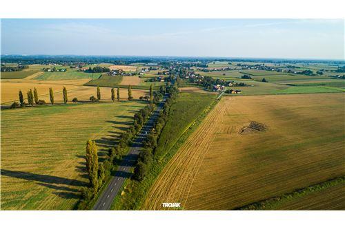 Investment - For Sale - Rudnik, Poland - 8 - 800061057-24