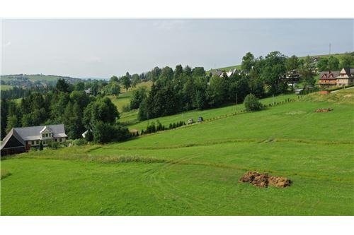 Plot of Land for Hospitality Development - For Sale - Zab, Poland - 22 - 470151035-8