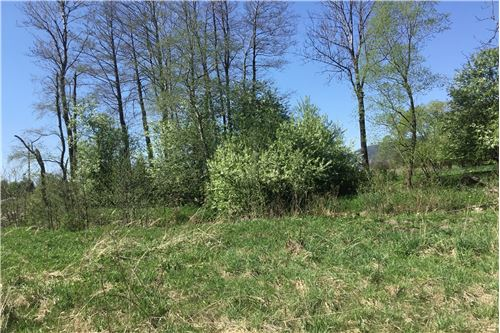 Land - For Sale - Lodygowice, Poland - 5 - 800061090-1