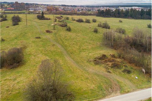 ที่ดิน - ขาย - Szaflary, Polska - 26 - 470151024-252