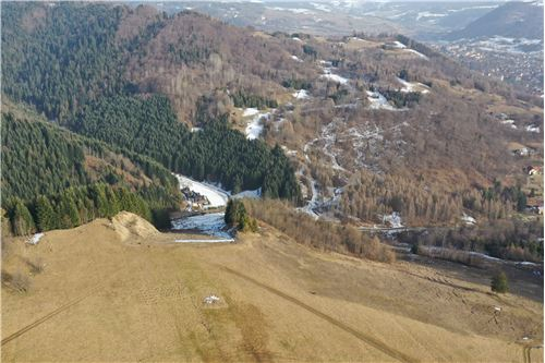 Investment - For Sale - Szczawnica, Poland - 15 - 800091028-24