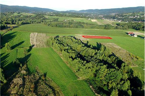 Land - For Sale - Lekawica, Poland - 11 - 800061093-10