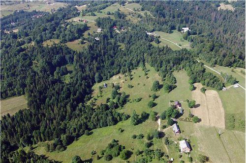 Plot of Land for Hospitality Development - For Sale - Sól-Kiczora, Poland - 16 - 800061076-120