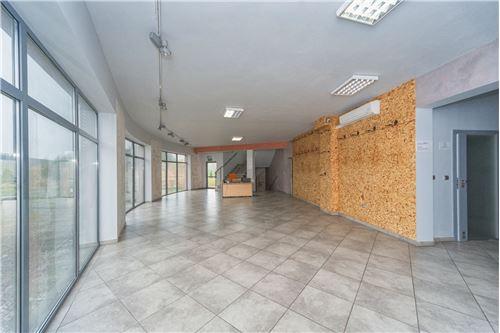 Investment - For Sale - Czechowice-Dziedzice, Poland - 58 - 800061054-123