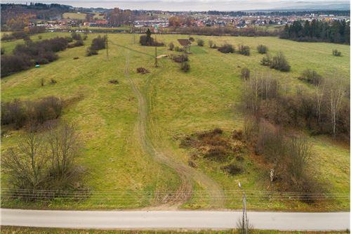 ที่ดิน - ขาย - Szaflary, Polska - 25 - 470151024-252