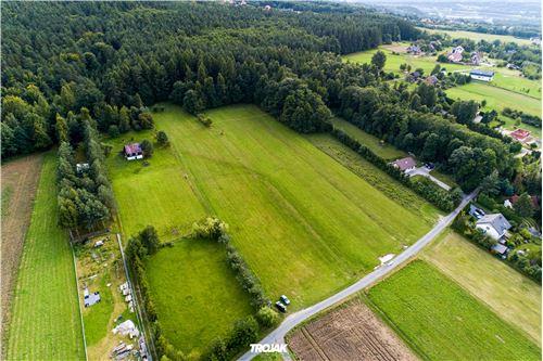 Land - For Sale - Czaniec, Poland - 13 - 800061057-48