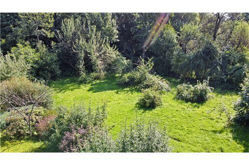 Land - For Sale - Bielsko-Biala, Poland - 65 - 800061039-131