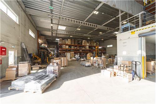 Industrial - For Sale - Cieszyn, Poland - 65 - 800061076-103