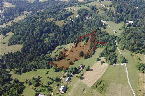 Plot of Land for Hospitality Development - For Sale - Sól-Kiczora, Poland - 20 - 800061076-120