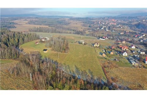 Plot of Land for Hospitality Development - For Sale - Naprawa, Poland - 15 - 470151035-6