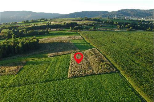 Land - For Sale - Lekawica, Poland - 12 - 800061093-10