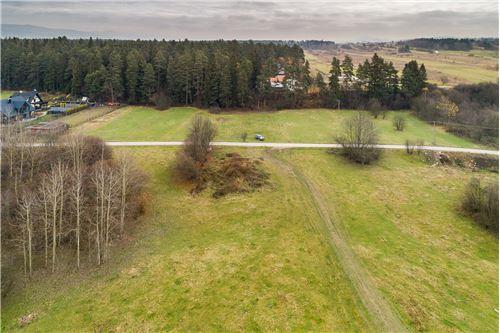 ที่ดิน - ขาย - Szaflary, Polska - 29 - 470151024-252