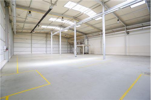 Nieruchomość przemysłowa - Sprzedaż - Kluczbork, Polska - 36 - 800141002-359
