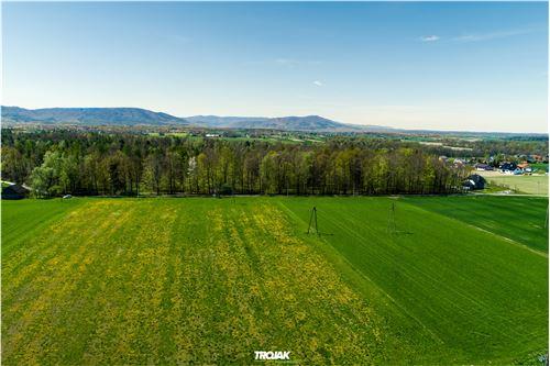 Plot of Land for Hospitality Development - For Sale - Nidek, Poland - 16 - 800061057-38