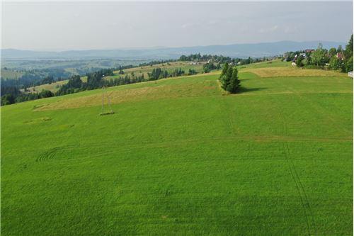 Plot of Land for Hospitality Development - For Sale - Sierockie, Poland - 20 - 470151035-24