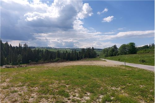 Land - For Sale - Bialy Dunajec, Poland - 7 - 470151035-23