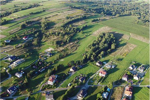 Land - For Sale - Lekawica, Poland - 10 - 800061093-10