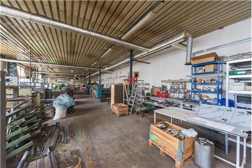 Industrial - For Sale - Czechowice-Dziedzice, Poland - 85 - 800061076-114