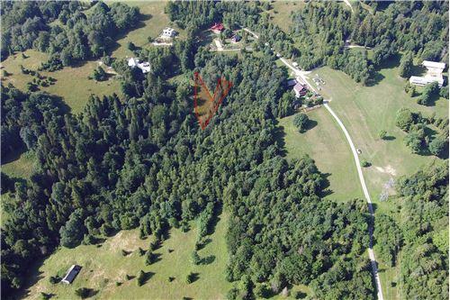 Plot of Land for Hospitality Development - For Sale - Sól-Kiczora, Poland - 25 - 800061076-120